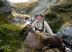 Lilydale Wilderness Area - Himalayan Bull Tahr and Nanny Tahr Combo.  Click for full details regarding this package.