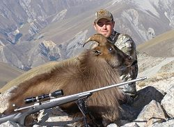 NZ Backcountry Guides - Himalayan Bull Tahr or Red Stag.  Click for full details regarding this package.