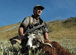 New Zealand Safaris - New Zealand's Big Five Hunt.  Click for full details regarding this package.