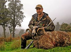 Wilderness Quest New Zealand - Mega Hunt.  Click for full details regarding this package.